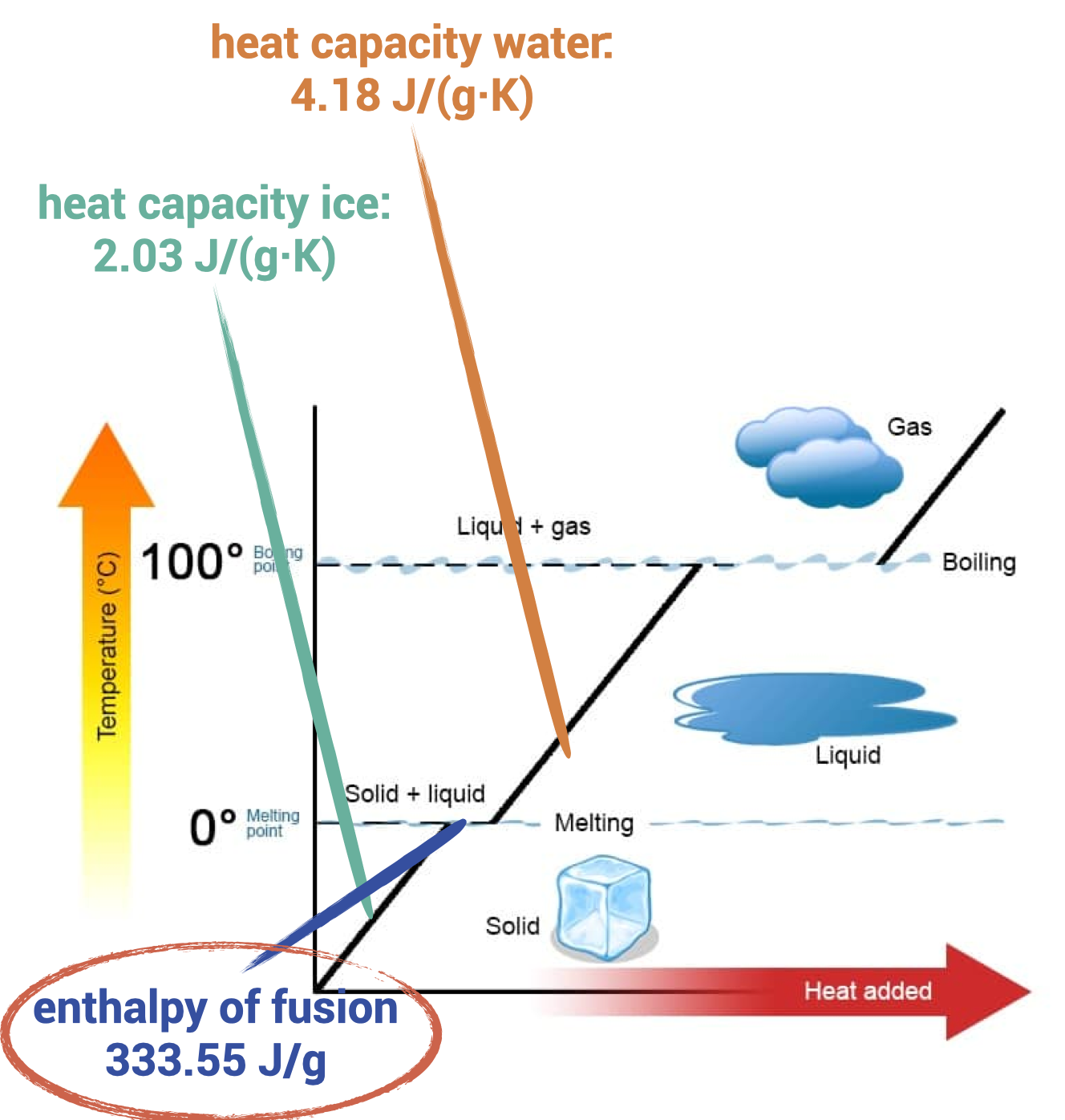Heat diagram of water. The melting of ice is the determining factor in the chilling of cocktails.